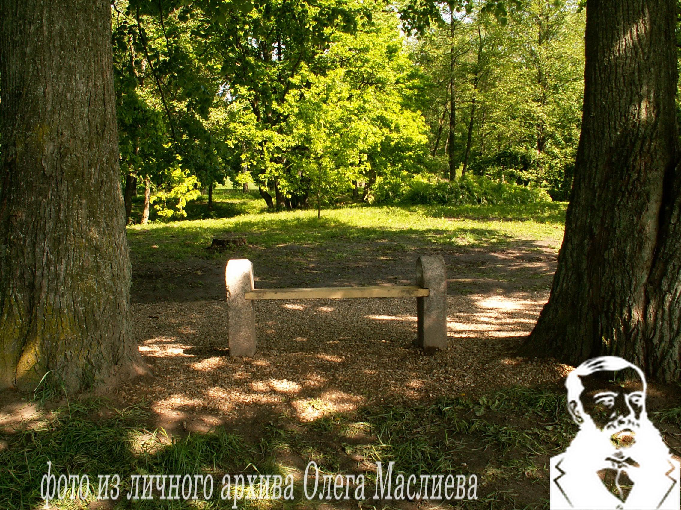 Парковая скамья на острове Радости в усадьбе Станьково.